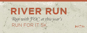 Run with FOC in this year's Run For It 5k