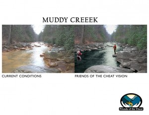 Muddy Creek Image